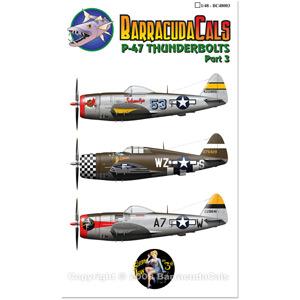 P 47 (航空機)の画像 p1_2