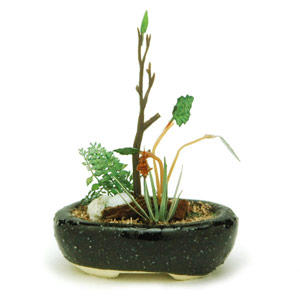 PLATZ 1/12 THE BONSAI Group planting w/Oval pod(Turquoise)