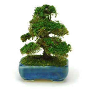 PLATZ 1/12 THE BONSAI Japanese cedar w/Square pod(Blue)