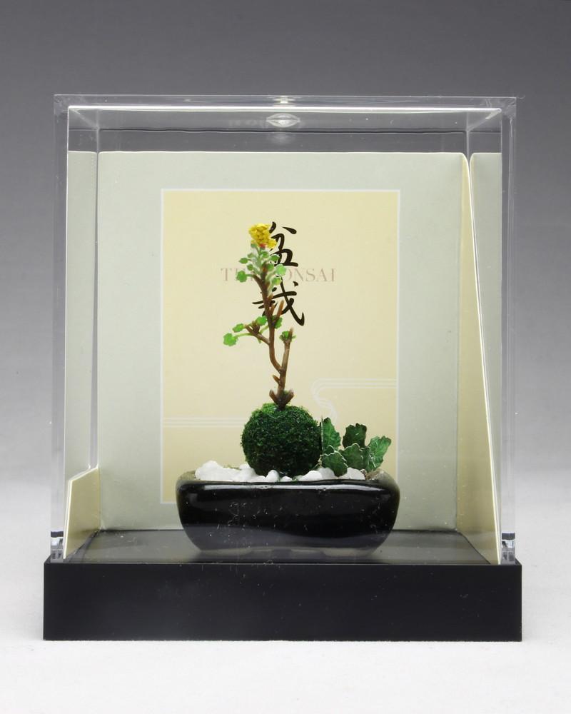 プラッツ 野草寄せ植え【 黒角鉢】 [BONN13] - 1,944円 : プラモデル・模型メー