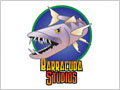 Barracuda Studio